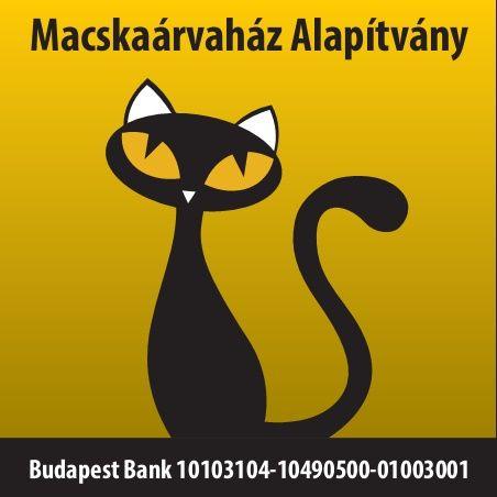 Macskaárvaház-Alapítvány