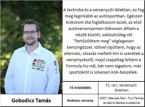 Gobodics Tamás
