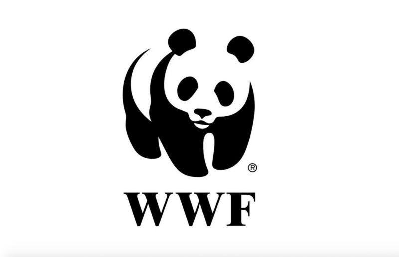 Keszthelyi_Vivien_autoversenyzo_WWF